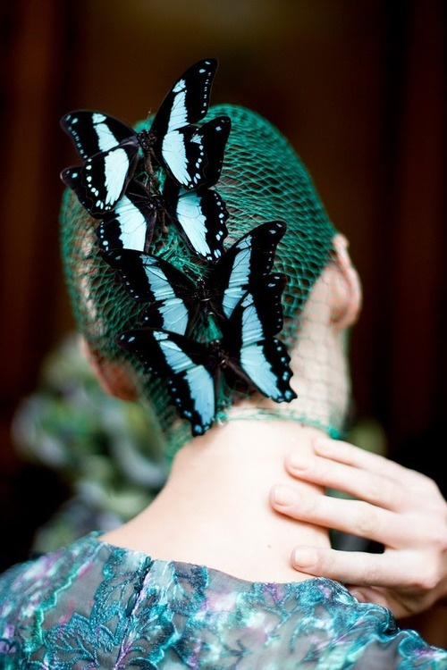 ⍙ Pour la Tête ⍙  hats, couture headpieces and head art -  Giambattista Valli haute couture, fall 2012.