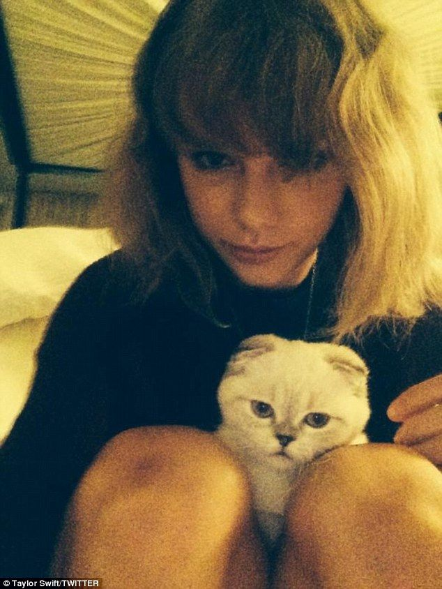 The 24-year-old pop starlet also shared a snap with her adorable Scottish Fold kitten Olivia Benson captioned: 'These are our #VMAs game faces'