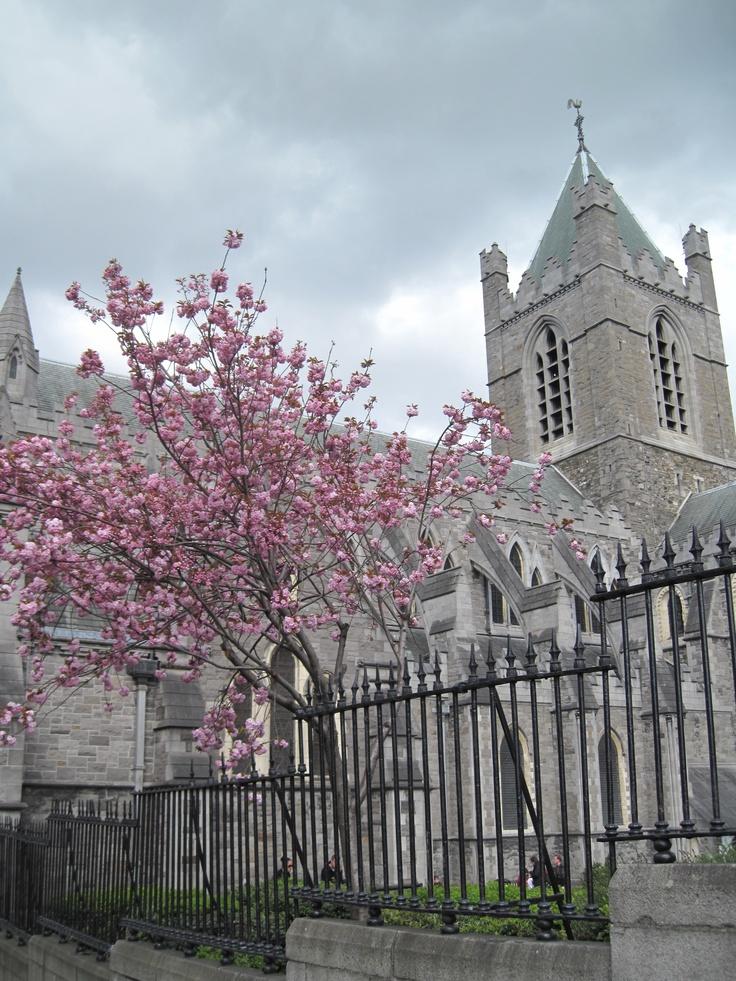 Dublin, Ireland: Buckets Lists, Beautiful Pieces, Night Life, Dublin Ireland, Beautiful Places, British Life, Ireland 2008, Life Goals, Ireland Trips