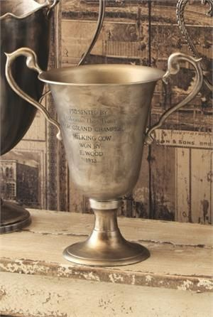 1000 Images About Trophy Cup On Pinterest Old Trophies