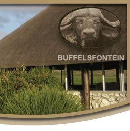 Buffelsfontein Game and Nature Reserve - Home