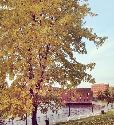 Fall in Hämeenpuisto. City of Tampere. Finland