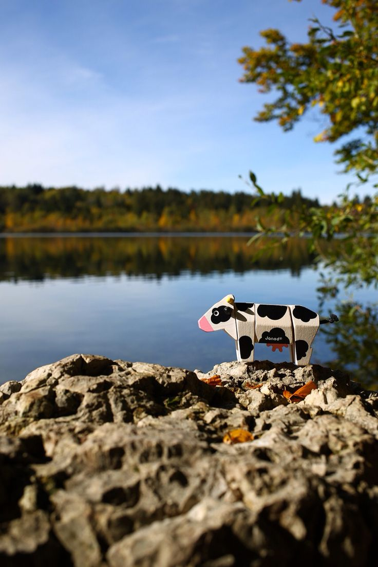 Cow Funny Kit.