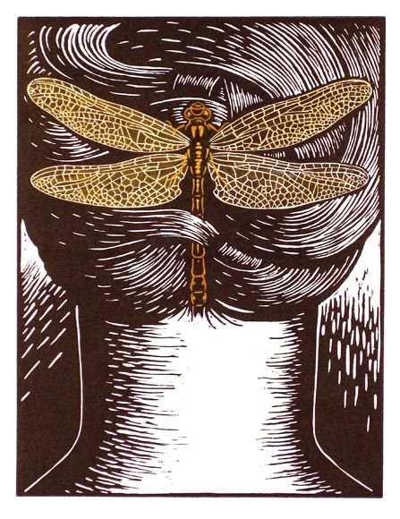 Deborah Klein, Enchanted Hair Ornament 4 Gomphus vulgatissimus (dragonfly) 2009, linocut, hand coloured.