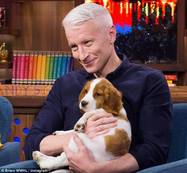 Friend: He also said that he was 'very happy at CNN' and no one had offered him a job at this point (above with his new puppy)