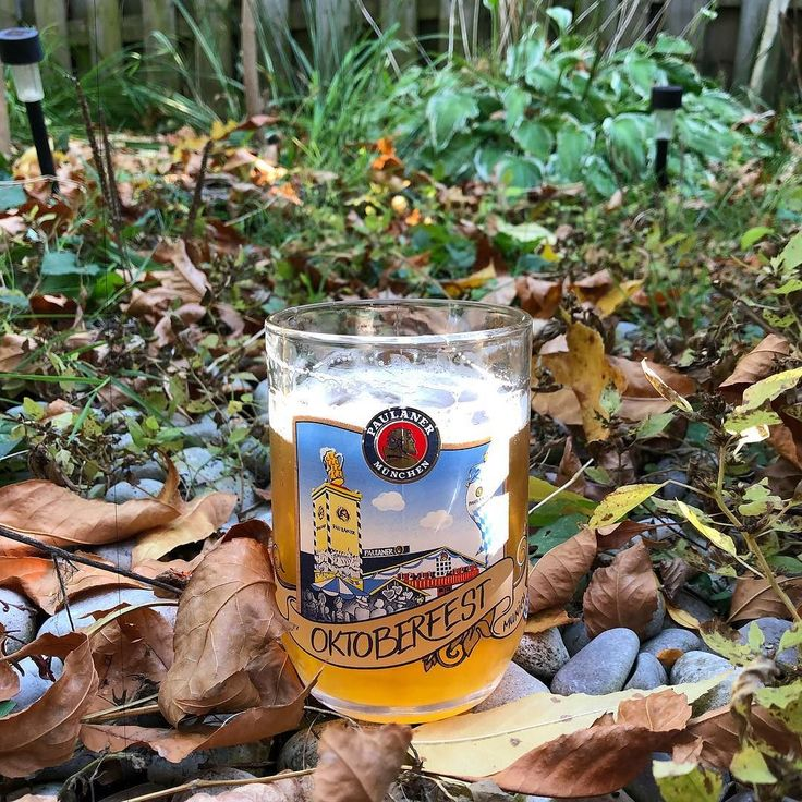 Cozy #October ... #followbeer #beer #beerto #paulaner #oktoberfest #toronto #backyard #fall #autumn #craft #pint #ground
