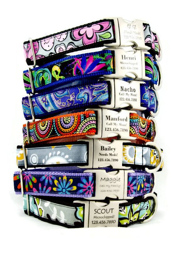 Summer Bright Personalized Dog Collars Laser by PupPanache on Etsy