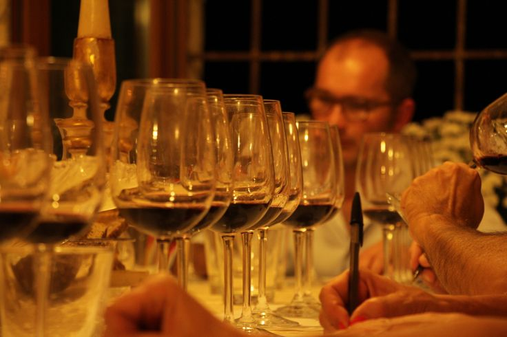Blind tasting in cellar: Amarone Classico 2008