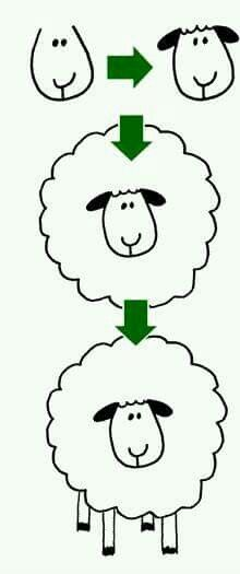 How to draw sheep Más
