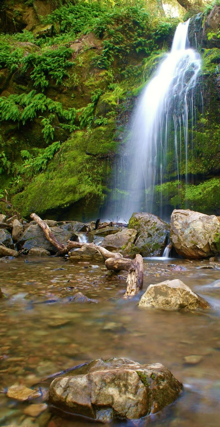 Best hiking trails in San Jose that will guarantee your good time. Know more with TripHobo.