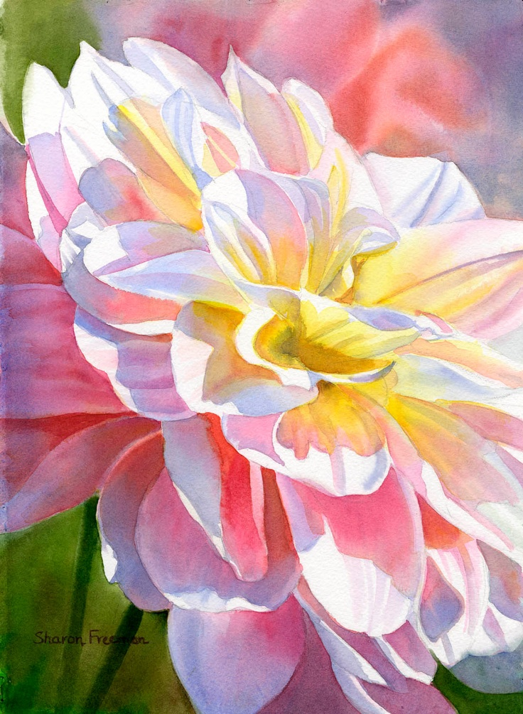 Yellow & Peach Colored Dahlia Watercolor Painting by Sharon Freeman