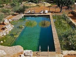 Resultado de imagen de piscina sin cloro