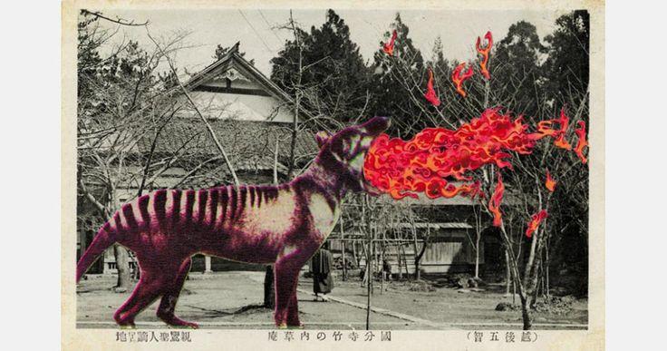 Untitled from the series Japanese Monster Movies - Jan Dziaczkowski, 2010