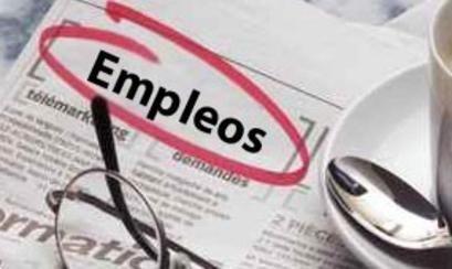 El #empleo en #España aumenta su dinamismo y pasa del 12,1% al 16,4% en los últimos 18 meses