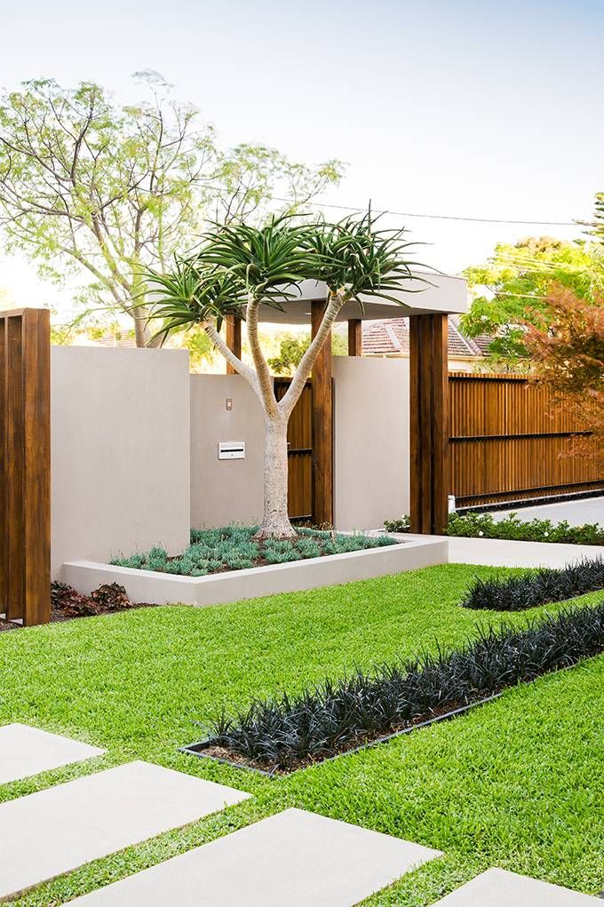 Minimalist Garden in Australia incorporating the garden into the overall design. strips of Mondo Grass break up the lawn. geometric shapes of concrete, wood, & landscape are repeated.