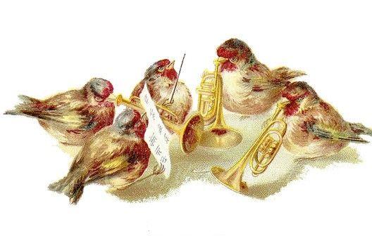 Винтажные почтовые открытки с птичками. Обсуждение на LiveInternet - Российский Сервис Онлайн-Дневников