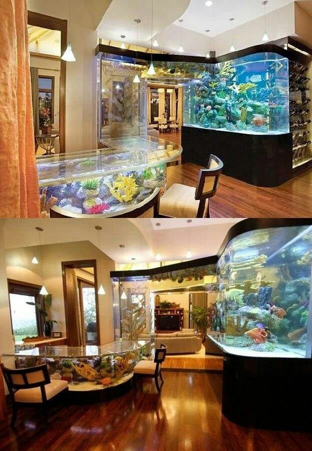 Epic fish tank that has a portal connecting to the kitchen table.