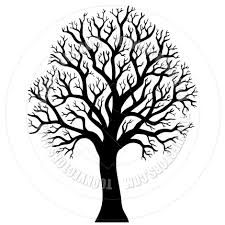 Image result for pencil drawing of a tree without leaves