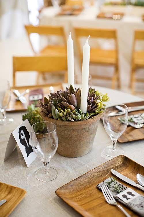potted centerpiece wedding ideas