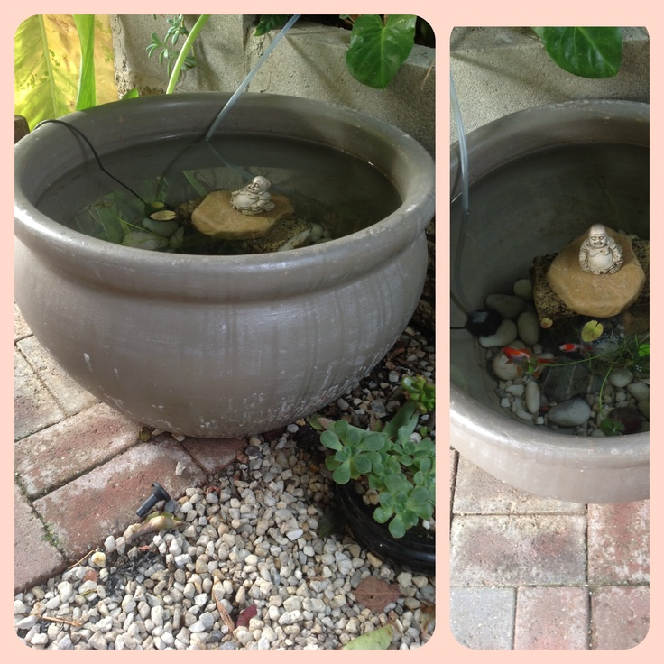 1000 images about fairy gardens and water features on for Container ponds with fish