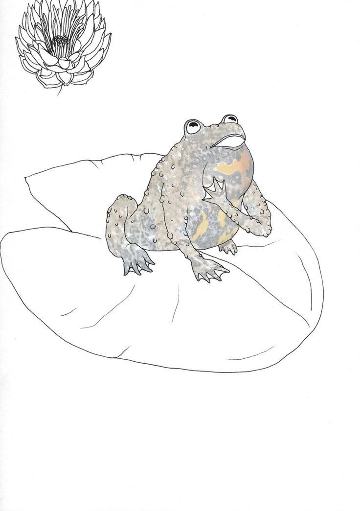"""opera singer, the croaker"", Stanislaus Medan, 2014 #animals #park #grafic #children #drawing #collage #fotocollage #alarmist #croaker #singing"