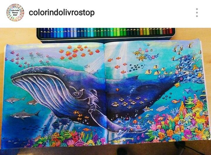 Whale Tattoo DrawingsDoodle ColoringAdult ColoringColoring BooksDrawing IdeasWhalesPrismacolorFishDraw