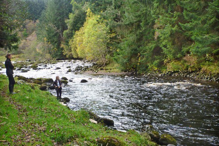 Dalreoch Falls