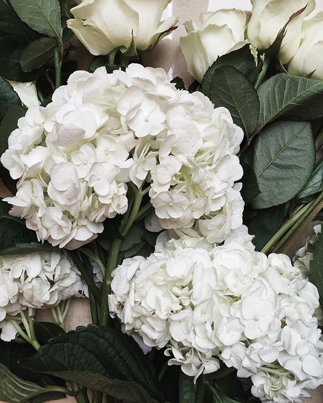 Cet après-midi c'était atelier floral au @fsparis avec l'incroyable fleuriste star @jeffleatham (j'ai eu l'impression d'être dans un show tv US, ses meilleurs potes sont Oprah et Les Kardashian, je vous laisse imaginer) (vous pouvez tout voir sur mon snapchat), moi qui adore les fleurs et les plantes j'étais au top  #fsgeorgev #jeffleatham #flowers #hotel #paris
