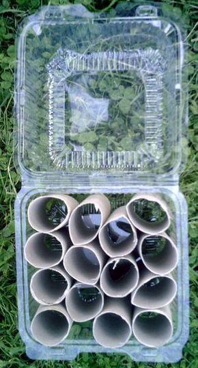 Une mini-serre pour les semis : Encore une idée bricolage à moindre frais et sans se fatiguer ! En plus on recycle des emballages plastiques plutôt que de les jetter!...Agissons pour notre planète... Coût: 0€ Matériel : -des cartons de rouleaux de papier... #jardines