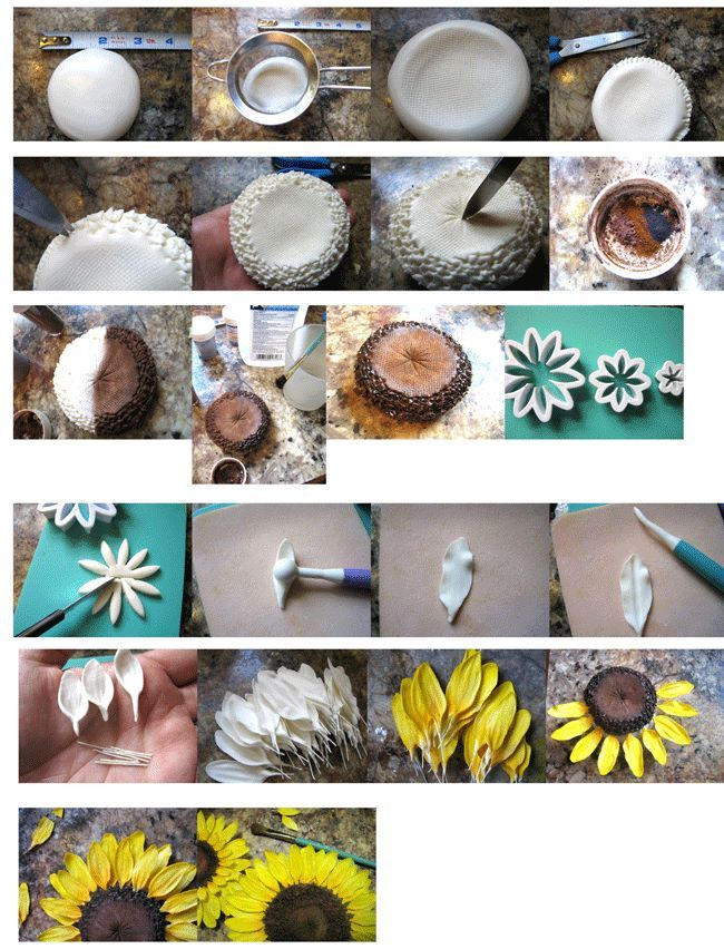 Sunflower https://www.facebook.com/pages/Sadies-Cakes/107846679249772.