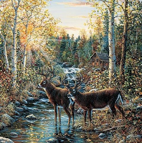 Whitetail Deer Wall Mural Nature Wall Mural Pinterest