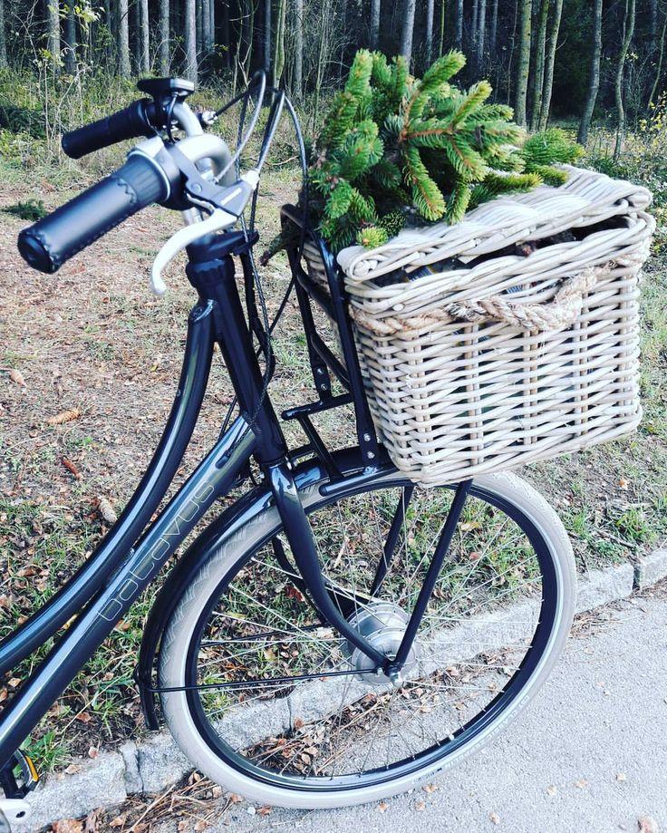 """Gefällt 62 Mal, 3 Kommentare - NaturNah (@petra.klein.naturnah) auf Instagram: """"So ein großer Fahrradkorb ist schon toll, da passen jede Menge an Tannenzapfen, Moos,…"""""""