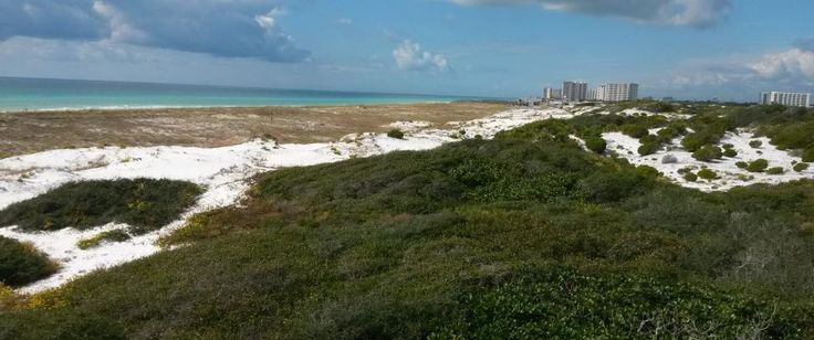 Henderson Beach State Park in Florida is supposed to be the most pristine private place there!