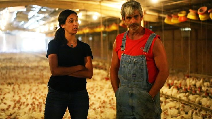 """My name is Craig Watts, and I'm a farmer for one of the biggest chicken companies in the United States --Perdue. After 22 years under contract, I couldn't stay silent any longer about the so-called """"humanely raised"""" and """"cage free"""" chicken consumers often pay a premium for at the supermarket. Consumers were being hoodwinked, so I joined forces with  Compassion in World Farming to  open the doors of my chicken houses to the world. Consumers were right to be outraged, and this is a chance…"""