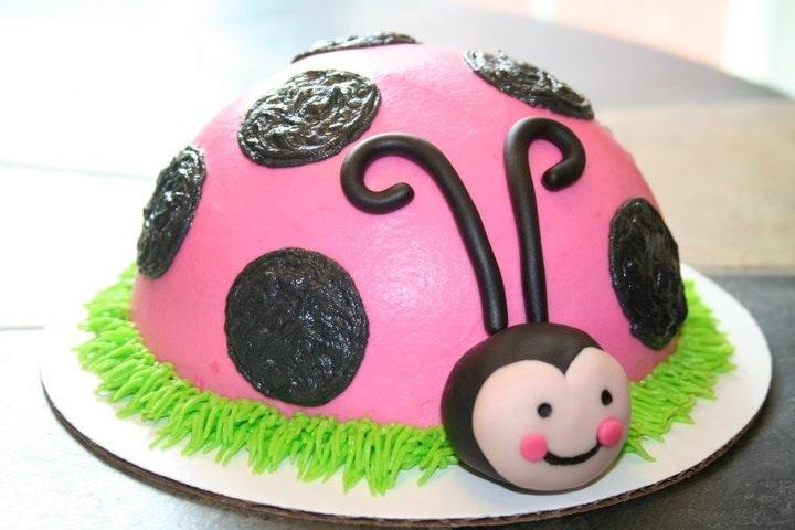 Shaped-pink ladybug smash cake www.facebook.com/sweetendingsbyj