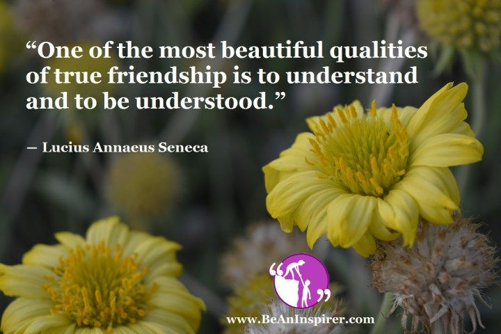 Facts of Ideal Friendship – Thoughts on Friendship: Article on #Friendship