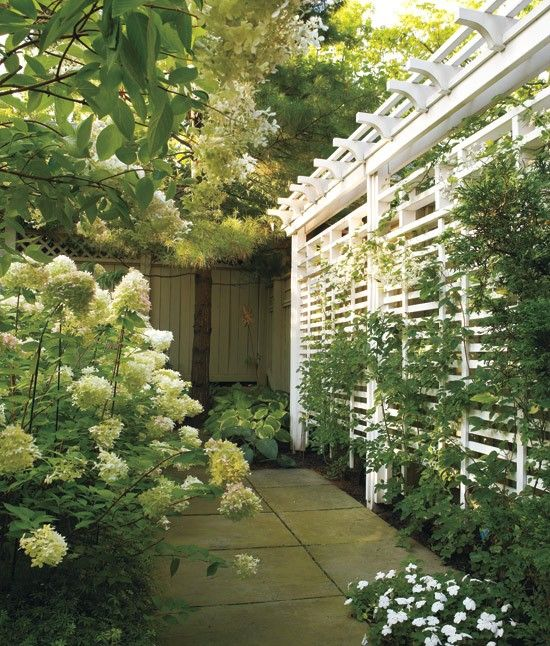Outdoor Privacy Screens | Outdoor Privacy Screen Ideas
