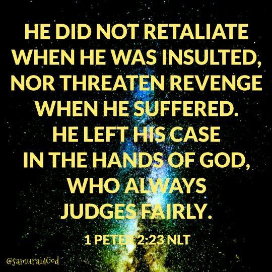 Bible Quotes Revenge: Best 25+ 1 Peter 5 Ideas On Pinterest