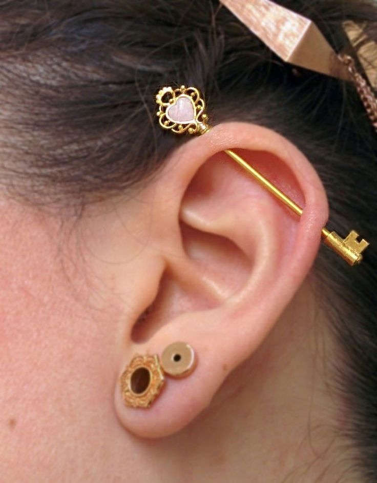 531 Best Images About Ear Piercings Tragus Piercing