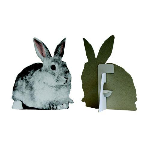 Flat Pets - Rabbit, Buy Unique Gifts From CultureLabel.com