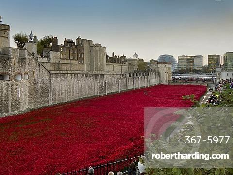 Ceramic poppies forming the installation Blood Swept Lands and Seas of Red to remember the Dead of the First World War, Tower of London, London, England, United Kingdom, Europe