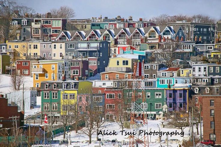 Winter Morning in St. John's, Newfoundland <3