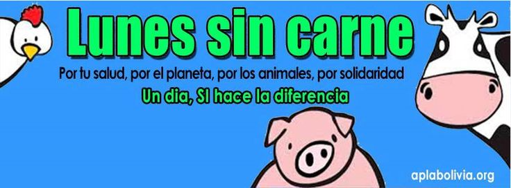 Lunes sin Carne Bolivia was launched in January 2014. Their efforts are led by the Animal rights organization APLAB, Amor por los Animals Bolivia.