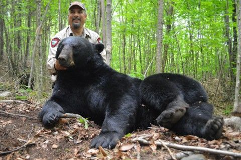 50 best dr antin images on pinterest beautiful men cute for California department of fish and wildlife jobs