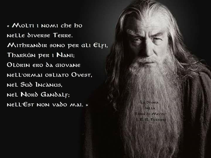 Gandalf Il Signore Degli Anelli Il Signore Signore Degli