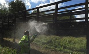 The bridge at Bishop's Waltham North Pond has been given a wash and brush up by Winchester City Council's Street Care Team.
