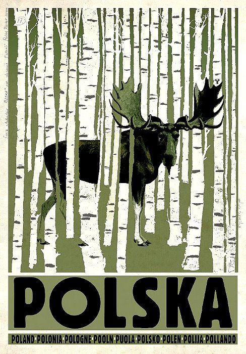 POLAND Birchwood and Elk, Polish Tourist Poster - by Ryszard Kaja