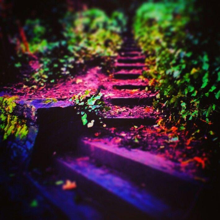 Steps on the Kelvin, Glasgow.