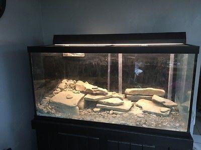Aquarium Tanks And Stands