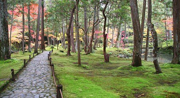 Moss Temple / Saihoji / Kokedera - oh my gorgeousness. Takes advance planning and ~ 3000 yen
